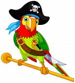 stock photo of lovable  - Illustration of Pirate Parrot - JPG