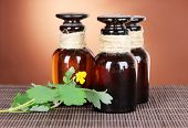 stock photo of celandine  - Blooming Celandine with medicine bottles on table on brown background - JPG