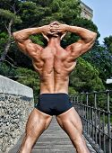 Muscular Bodybuilder's Back With Hands Behind His Head