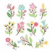 Set of elegance floral bouquets , vector collection