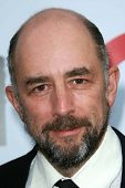 Richard Schiff at the Los Angeles Film Festival 2007 Spirit Of Independence Awards. Billy Wilder Theatre, Westwood, CA. 06-28-07