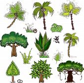 set of jungle trees