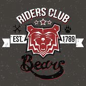 stock photo of raider  - Retro illustration muzzle bear raider club sign with a lettering grungy texture and other design elements - JPG