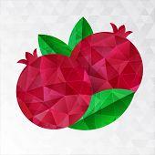 Two Pomegranates, Vector Illustration.
