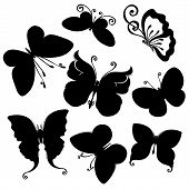 Vector Set of Butterflies. Stencils Isolated