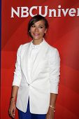 LOS ANGELES - JUL 13:  Rashida Jones at the NBCUniversal July 2014 TCA at Beverly Hilton on July 13,