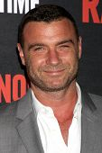 LOS ANGELES - JUL 9:  Liev Schreiber at the