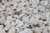 Small naturally white rock pebbles background