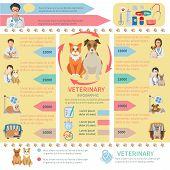 Veterinary Infographics
