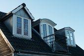 Modern Classical Vertical Roof Windows