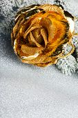 golden rose with festive background
