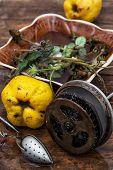 herbal ,homemade custard tea with quince