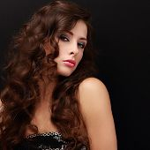 Beautiful Fashion Female Model With Long Brown Hair Looking