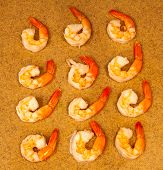 One Dozen Cooked Shrimp With Tails On