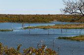 Lake At Kruger Park