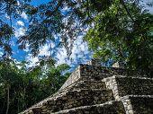 image of yucatan  - Mayan ruins in Coba - JPG
