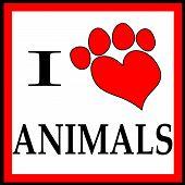 Framed I Love Animals