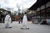 Shinto Priests Prepare For The Praying Ceremony In Shimogamo Shrine In Kyoto
