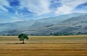 Beautiful Landscape In Italian Countryside With Hills And Mountains On Background