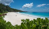 pic of petition  - Petit Anse tropical beach La Digue island Seychelles - JPG