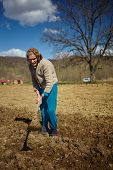 stock photo of potato-field  - Senior woman covering potatoes on a fresh plowed field - JPG