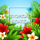 pic of tropical plants  - Exotic vacation - JPG