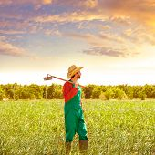 stock photo of hoe  - Farmer man with hoe looking at his orchard field with hat - JPG