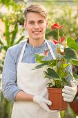 picture of flower shop  - Male florist holding flower pot in flowers shop - JPG