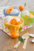 picture of kumquat  - Vanilla ice cream with fresh kumquats in colorful bowl - JPG