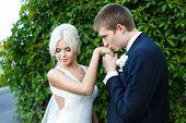 image of hand kiss  - Groom kissing bride - JPG