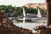Постер, плакат: Fellucas On Nile