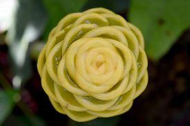 stock photo of zingiber  - Close up Yellow Beehive Ginger  - JPG