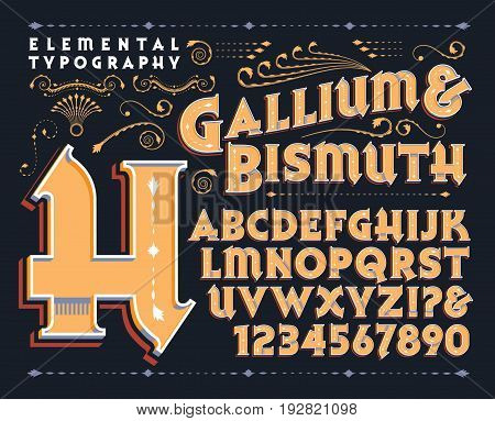 Gallium & Bismuth is a vintage style vector typeface with ornate elements and depth. This file includes all capitals, numerals, some punctuation, and design elements.