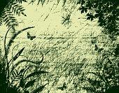 Planta Grunge