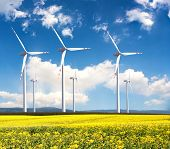 stock photo of biodiesel  - Windmill farm in the rapeseed field - JPG