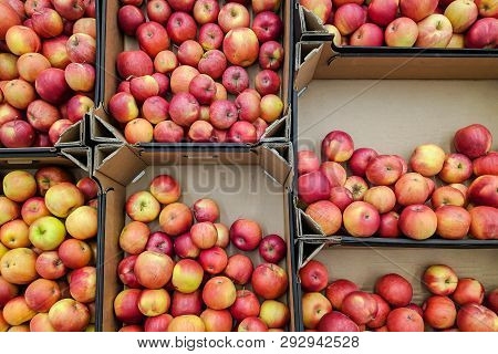 Red And Yellow Apples In