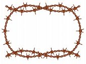 stock photo of barbed wire fence  - vector old rusty barbed wire frame pattern isolated - JPG