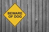 Beware of Dog!