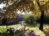 pic of tatas  - A beautifully peaceful still - JPG