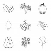 Yard Icons Set. Outline Set Of 9 Yard Icons For Web Isolated On White Background poster