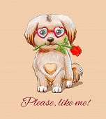Funny Puppy In Glasses - Hearts With With A Red Rose In The Teeth poster