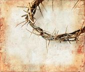 stock photo of crown-of-thorns  - Crown of thorns on a grunge background - JPG