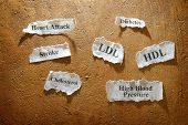 picture of diabetes symptoms  - torn paper scraps with various cardiovascular medical disease symptoms - JPG