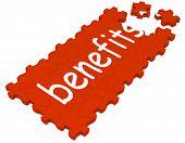 Benefits Puzzle Shows Compensations