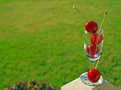 Ripe Red Cherries Stacked In A Mini Wine Glass