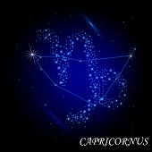 Sign of the zodiac -  Capricornus