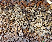 Woodpile of firewood in a garden