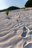 foto of footprints sand  - footprint into the sea  - JPG