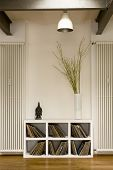 picture of koln  - View of lamp over vinyl records in shelf and houseplant at home - JPG