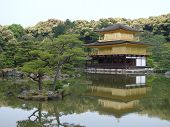 Golden Pavilion With Reflection